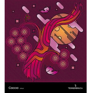 etichetta_coccio
